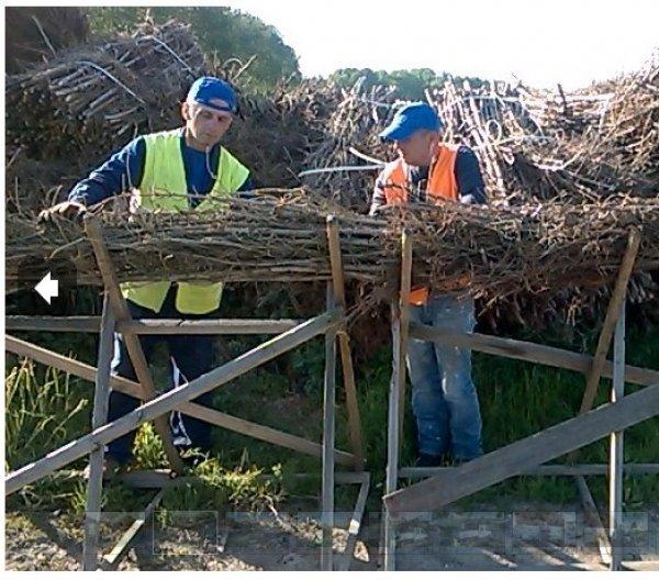 Faschinen und Pfähle, Holzprodukte